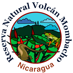 Reserva Natural Volcán Mombacho